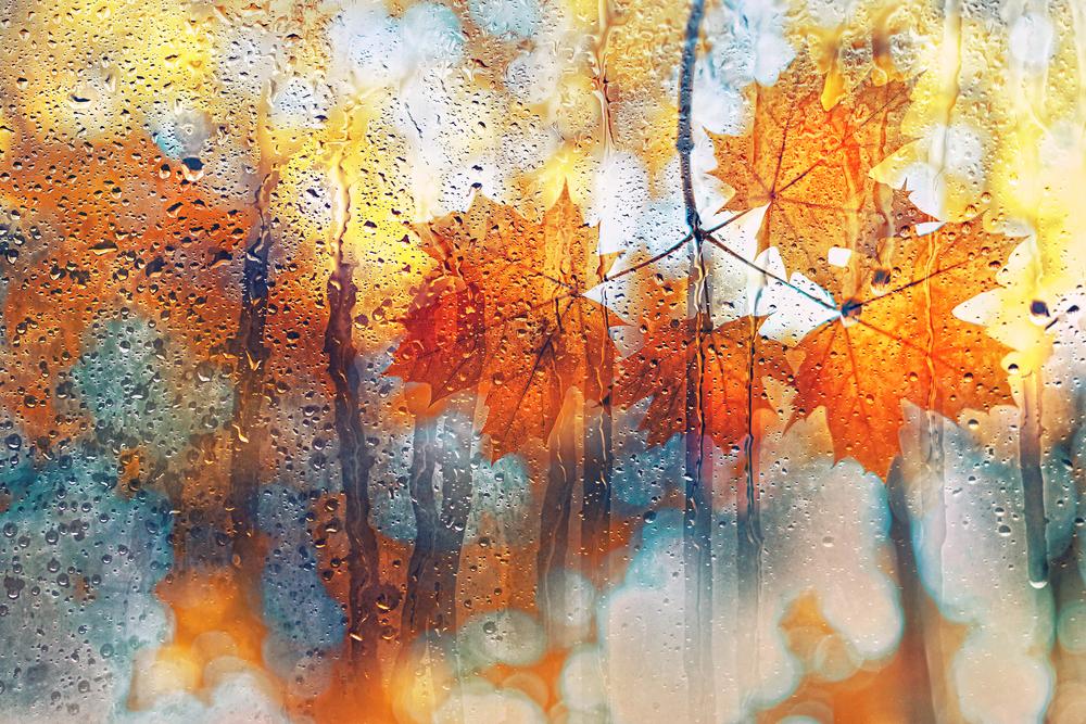 Jesienna chandra, jak sobie z nią poradzić?